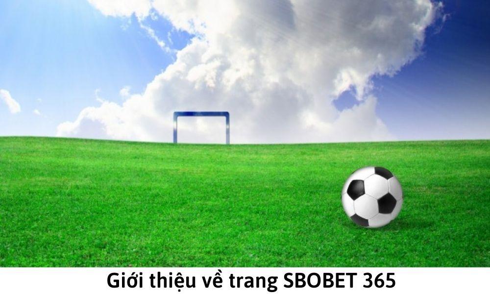 Giới thiệu về trang SBOBET 365