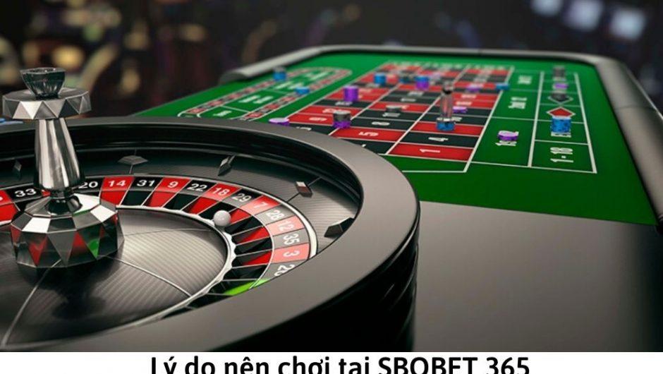 Lý do nên chơi tại SBOBET 365