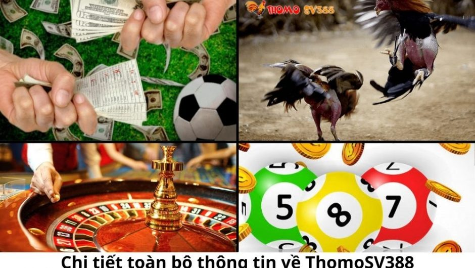 Chi tiết toàn bộ thông tin về ThomoSV388